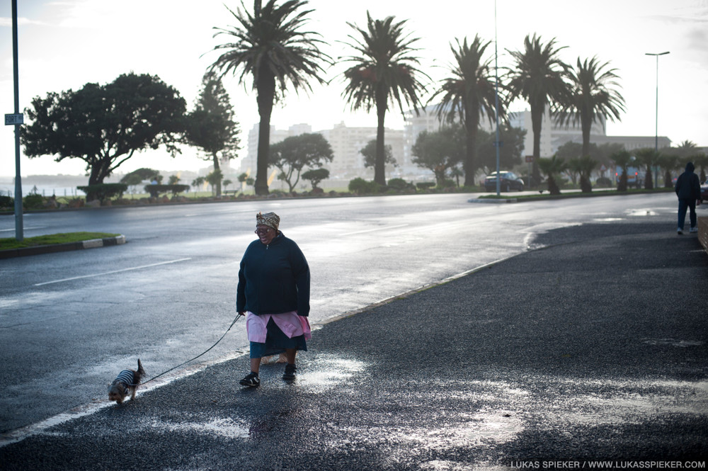 A domestic worker walks a dog in Cape Town, South Africa.