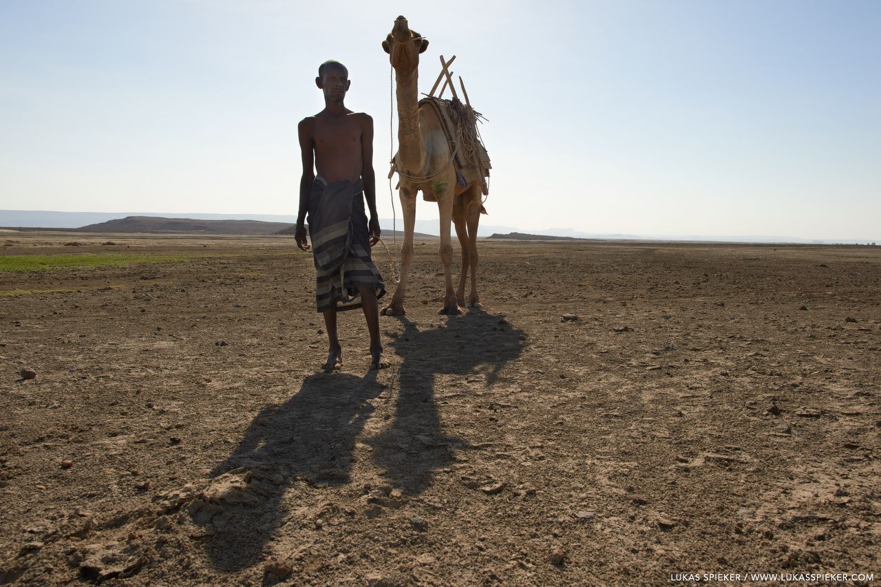 The desert around Lac Abbe at the border between Djibouti and Ethiopia is inhabited by Afar people herding camels, sheep, and goats.